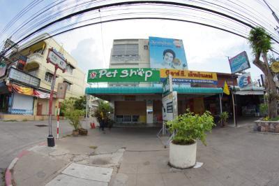 Pet Shop Hua Hin