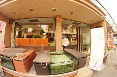 Siam Fish Spa